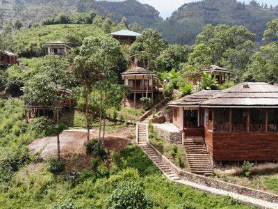 Four Gorillas Lodge