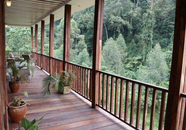 the lounge: Four Gorillas Lodge